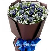 One Dozen Blue Rose