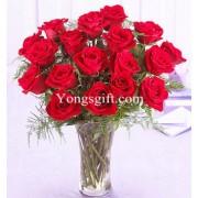 Premium Red Rose