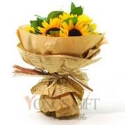 Sunflower Simplicity to Taiwan
