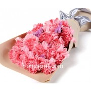 All Pink Carnations