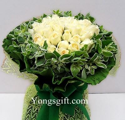 Two Dozen White Rose
