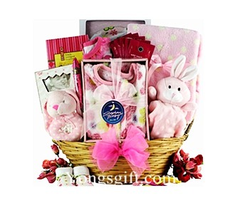 Sweet Arrival Baby Girl Gift Basket