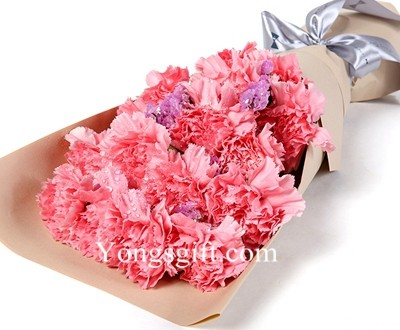 All Pink Carnations to Macau