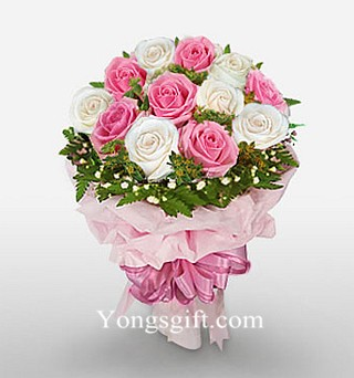 One Dozen Pink and White Rose